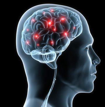 Selbstbewusstsein mit Hypnose verändern Strukturen im Gehirn